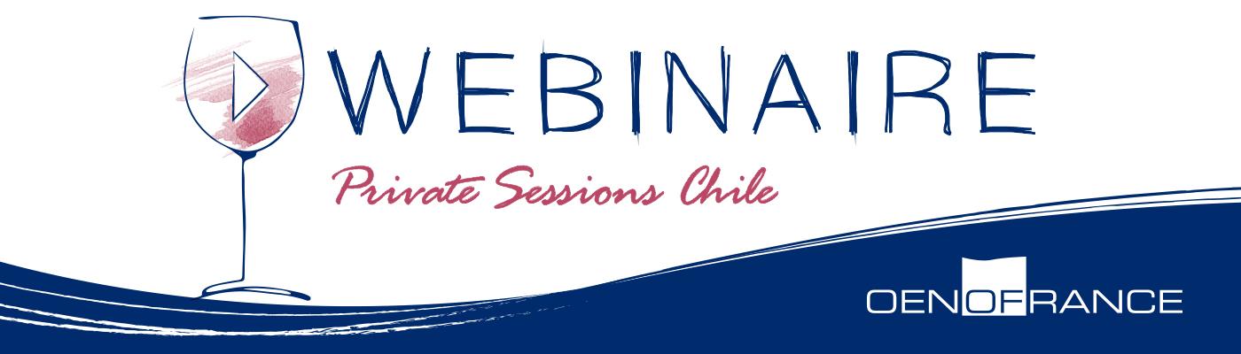 Webinar Private Sessions Chile